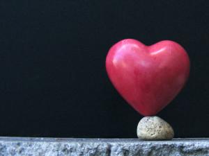 hart steen balans