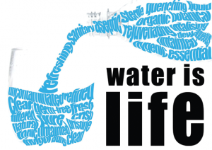 water_life-1